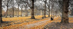 UK, England, London, Green Park, Autumn