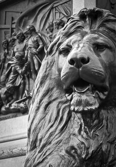 UK, England, London, Trafalgar Square, Nelson's Column, Lions by Edwin Landseer