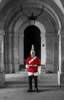 UK, London, Horse Guards Parade, Guardsman